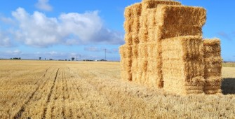 Any food or agriculture business requires a range of capable technologies.